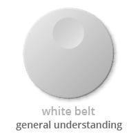 Lean Six Sigma Belts and Roles (Your Helpful, 5-Minute Guide)