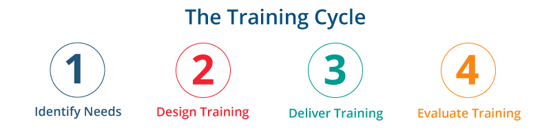 The Training Cycle