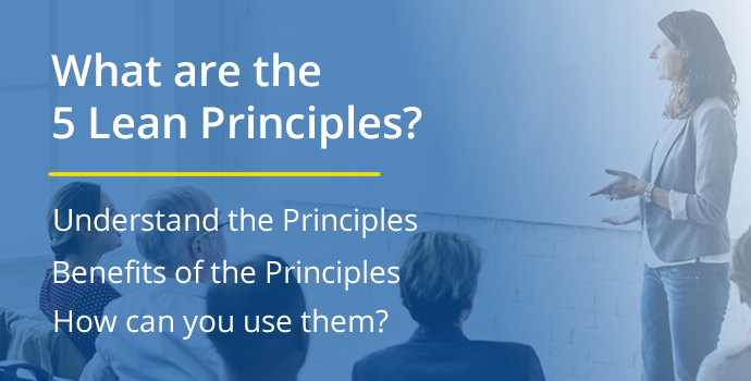 What are the 5 Lean Principles?