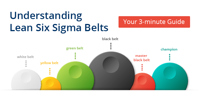 Lean Six Sigma Belts and Roles