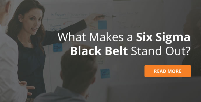 What is a Six Sigma Black Belt?