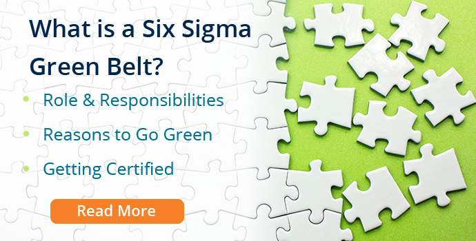 What is a Six Sigma Green Belt?