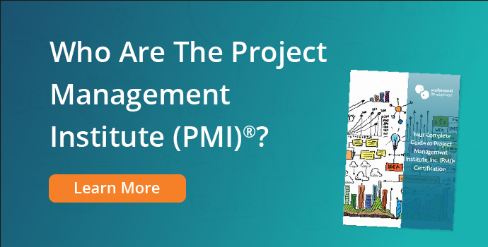 Who are the Project Management Institute (PMI)