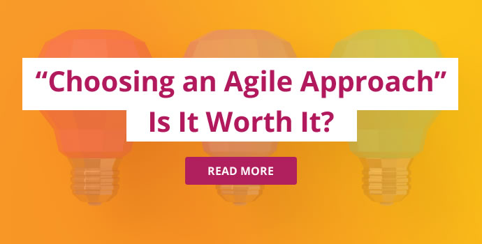 Why Choose Agile?